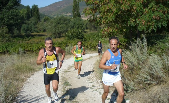 Trofeo Marcite