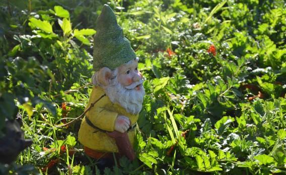 gnome-4308259_1920